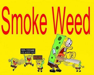 spongebob weed quotes humor lol spongebob