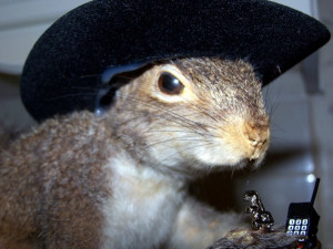 We Squirrels Used Walky Talky