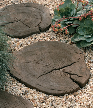 Stonemarket - Timberstone - Coppice Brown - Log Stepping Stone