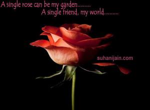 single rose can be my garden…… A single friend, my world….