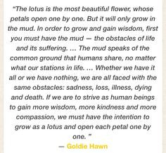 ... in lotus flowers more awesome quotes hawn quotes lotus flower 5 3