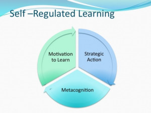 How to be a Self-Regulated Learner