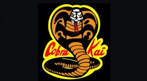 Cobra Kai Emblem: Kids Daniel San, Kids Fandom, Kids Danielsan, Cobra ...
