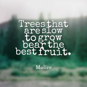 Bear Fruit Quotes