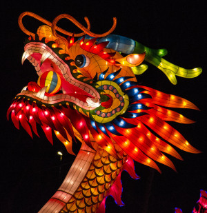 china_light_chinese_dragon_close_up_by_ainanas-d5t0tyj.jpg
