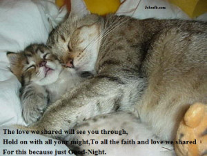 Good Night Quotes With Lovely Cute Little Cats