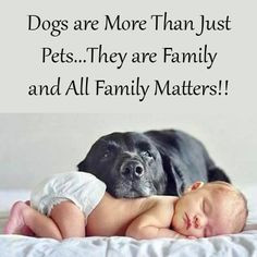 ... dogs either...they are family too! #dogs #children #kids #love #family