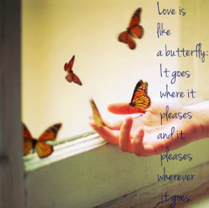 ... butterfly love quotes and sayings that might be an encouragement to us