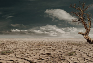 California-Drought-Public-Domain.jpg