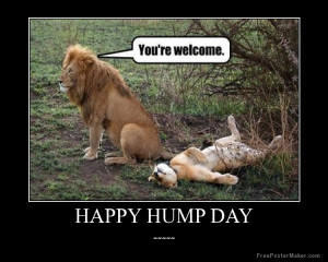 happy-hump-day-0qoinO.jpg