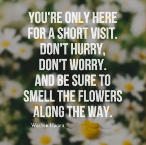 ... and be sure to smell the flowers along the way walter hagen # quotes