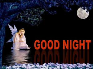 Good Night My Dear Friends…