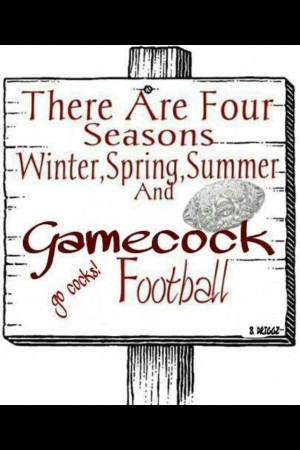 Football, Gamecock Fans, Gamecock Baby, Carolina Gamecocks Quotes ...