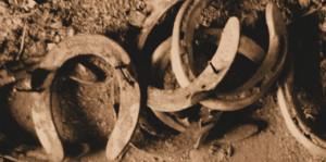 Amandas-Horseshoes