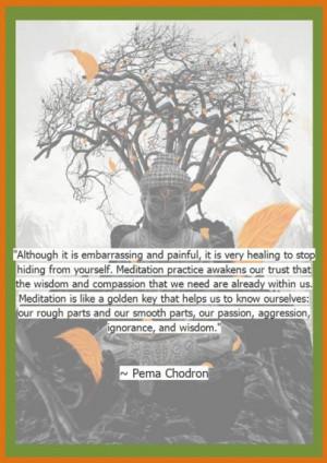 ... parts, our passion, aggression, ignorance and wisdom. - Pema Chodron