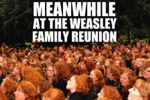 freckles, funny, ginger, gingers, harry potter, red hair, redheads ...