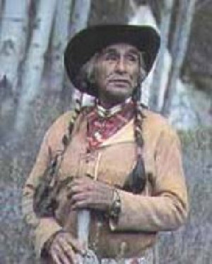 chief two eagles was asked by a white u s government official chief ...