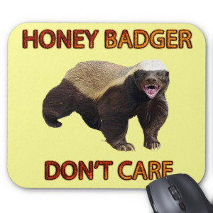 Honey Badger Don't Care, Funny, Cool, Nasty Animal Mouse Mat