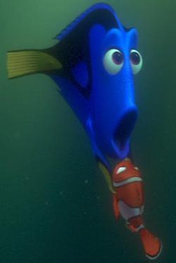 The dory fish quotes quotesgram - Image doris nemo ...