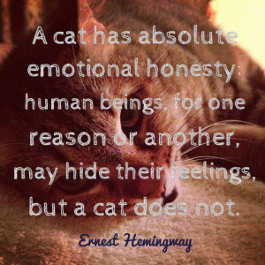 cat has absolute emotional honesty: human beings, for one reason or ...