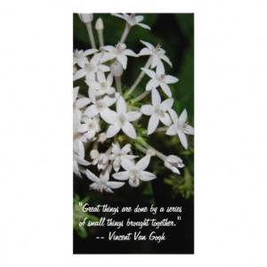Great sayings and Quotes- White flowers Picture Card