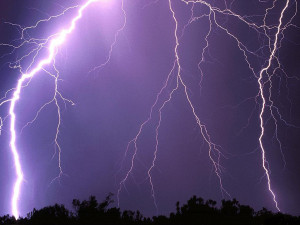 Fear of fireworks or thunderstorms is common in dogs, and tends to get ...