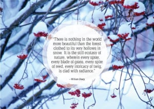 Inspirational-snow-quotes12.jpg