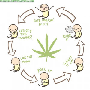 The real cycle of life...