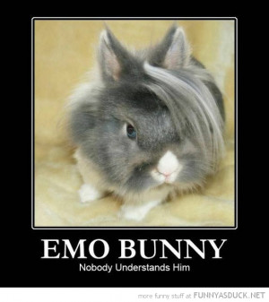 emo bunny rabbit animal nobody understands him funny pics pictures pic ...