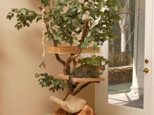cat-tree-house-designs-inspiration-with-real-trees-furniture ...