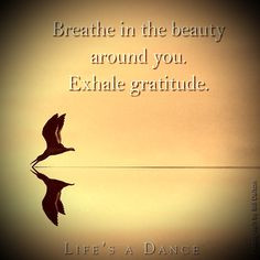 healing thru breathing more physical therapy quotes care physical 1