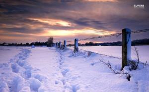 Footprints in the snow wallpaper 1280x800