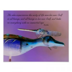 dragonfly quotes sayings