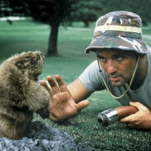 caddyshack gopher tags movies caddyshack