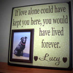 inspirational quotes about death of a pet pet pet inspiration and ...