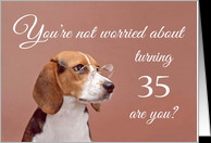 Happy 35th birthday, worried beagle card - Product #1149594