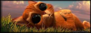 ... kitty-character-shrek-big-eye-cat-kitten-timeline-cover-for-fb-profile