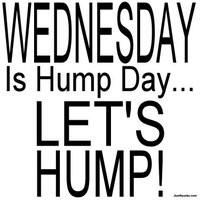 wednesday hump day photo: Hump Day Wednesday wednesday-13.jpg