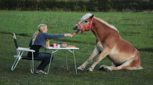 NienkevdWerf Funnyhorse Angelo 150x150 Photo Contest: Diner for Two