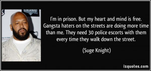 Gangsta Quotes About Haters Gangsta haters. more suge knight quotes
