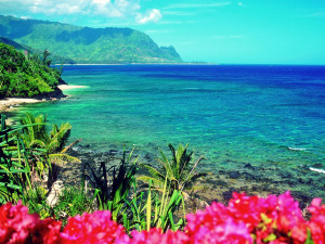 Hawaii Vacations Looking