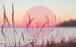 august-sunset-lake-summer-Favim_com-485033
