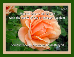 Physical beauty vs Spiritual Beauty quote on photograph of rose