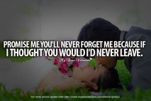 All I Want is You Quotes - Promise me you will never