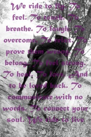 Horse photo shoot, Horse pose, horse saying
