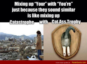 "Mixing up ""Your"" with ""You're"" just because they sound ..."