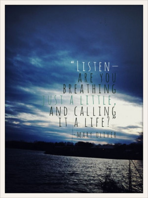 ... Quotes, Quote Life, Deep Breath, Favorite Quotes, Mary Oliver, Quotes