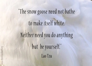 Snow goose quote - Lao Tzu
