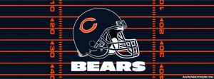 Chicago Bears Field Cover