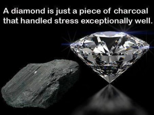 diamond is just a piece of charcoal that handled stress ...